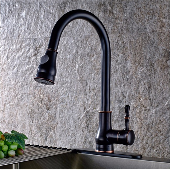Brio Goose Neck Single Handle Kitchen Sink Faucet With Hot Cold Water Mixer & Cover Plate