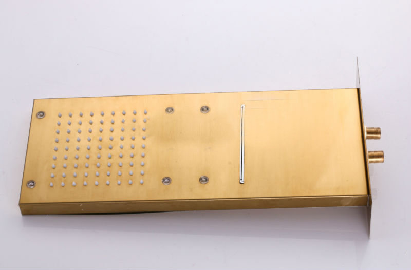 ... Gold Plate Two Ways Shower Head